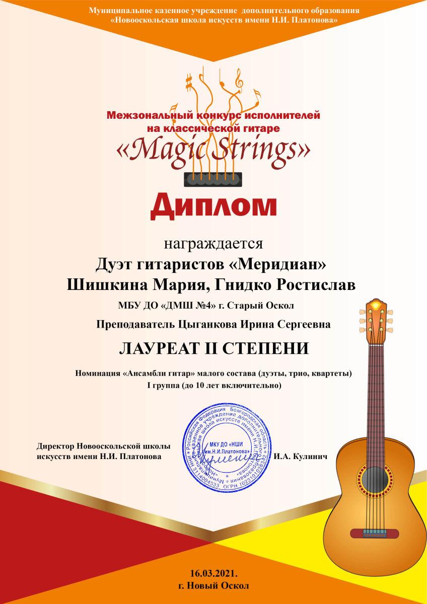 Меридиан  Гнидко Шишкина