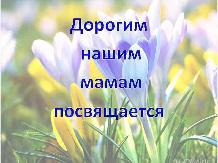«Нашим мамам посвящается»