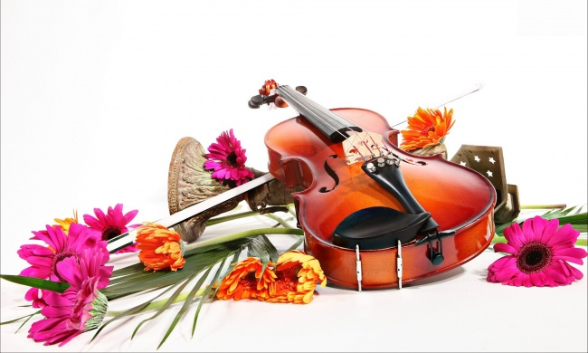 muzyka-muzykalnye-instrumenty-skripka-ge-595442